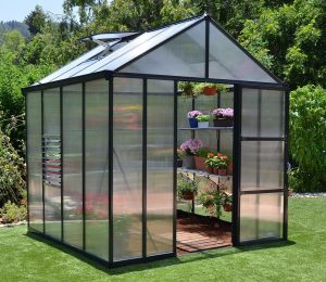 Palram Glory 8x8 Greenhouse