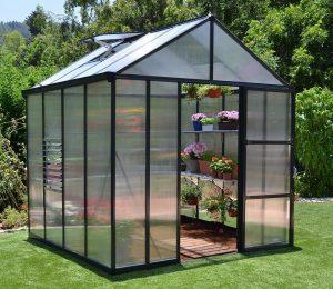 Palram Glory 8x8 Greenhouse