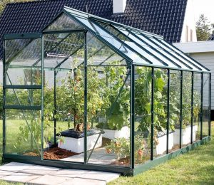 VitaVia Venus Greenhouse 12x6 Green Toughened