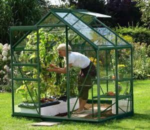VitaVia Venus Greenhouse 4x6 Green Toughened