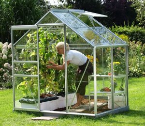 VitaVia Venus Greenhouse 4x6 Silver Toughened