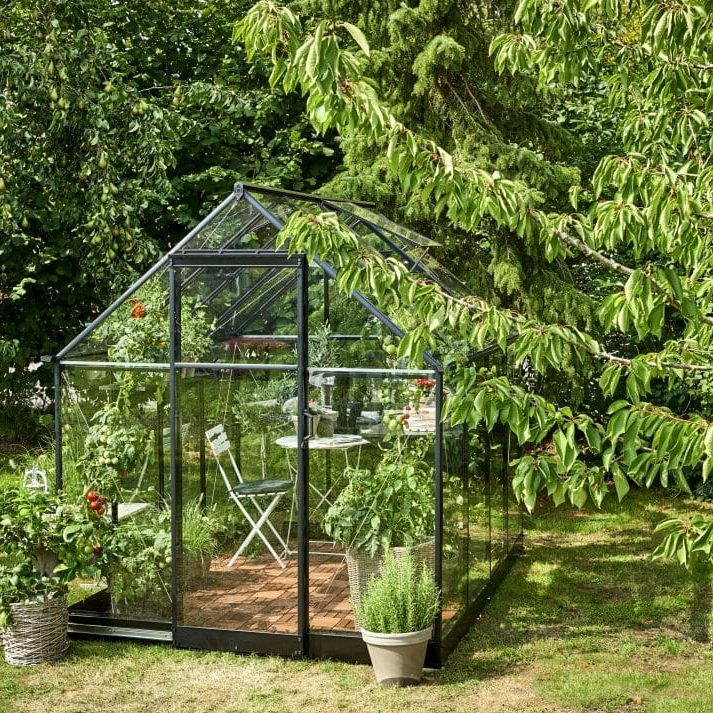 Halls Qube Greenhouse with Surrounding Bushes
